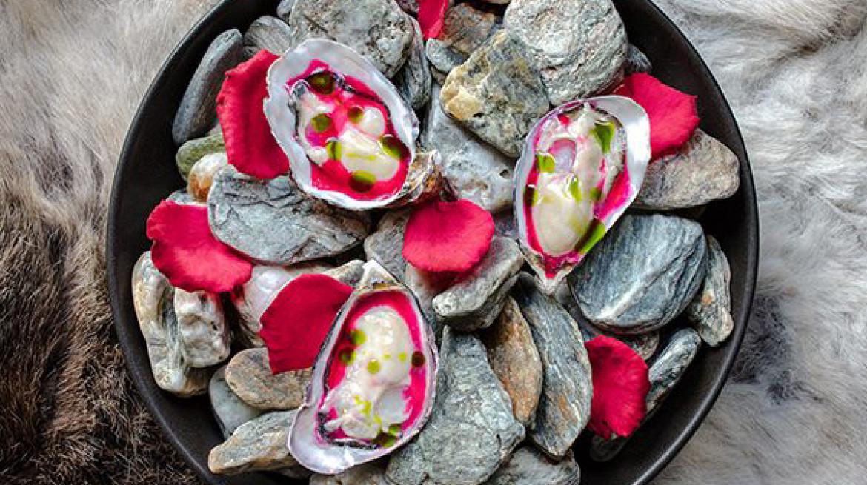lodge bar oysters2y