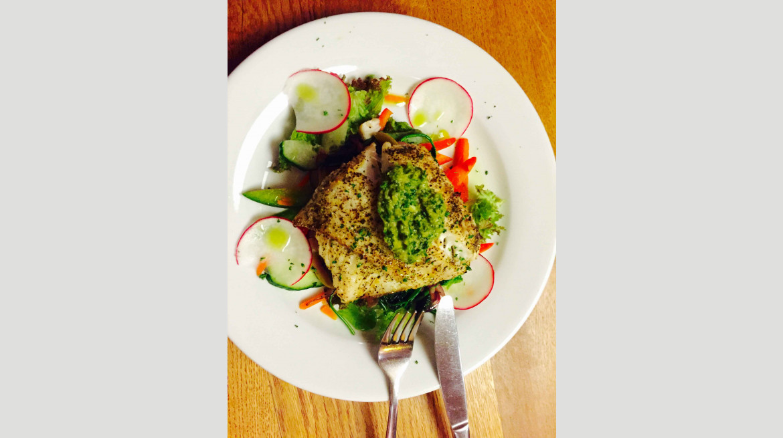 blackbird food 4