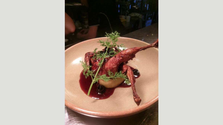 salt quail