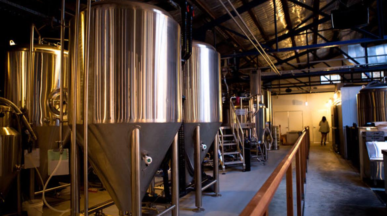 foghorn brewhouse 10