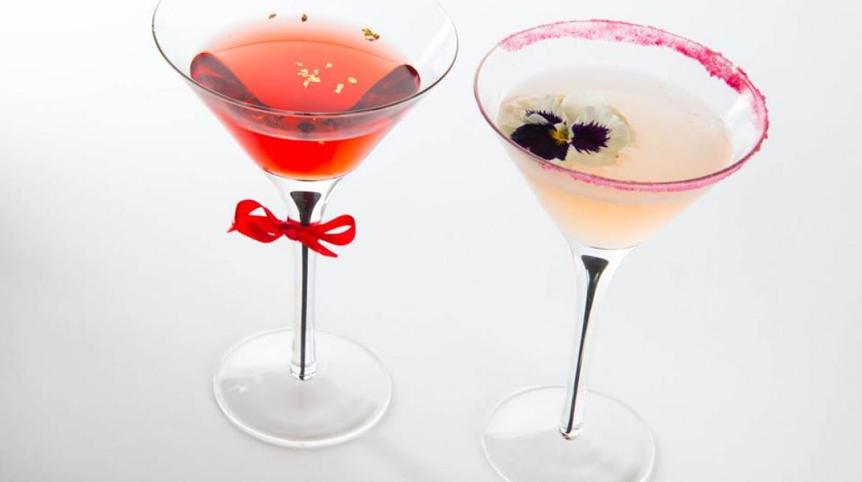 Bella drinks 1