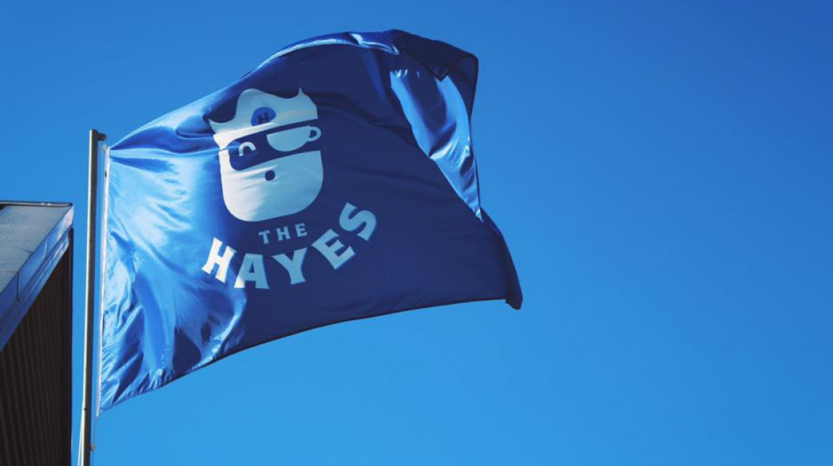 the hayes pirate