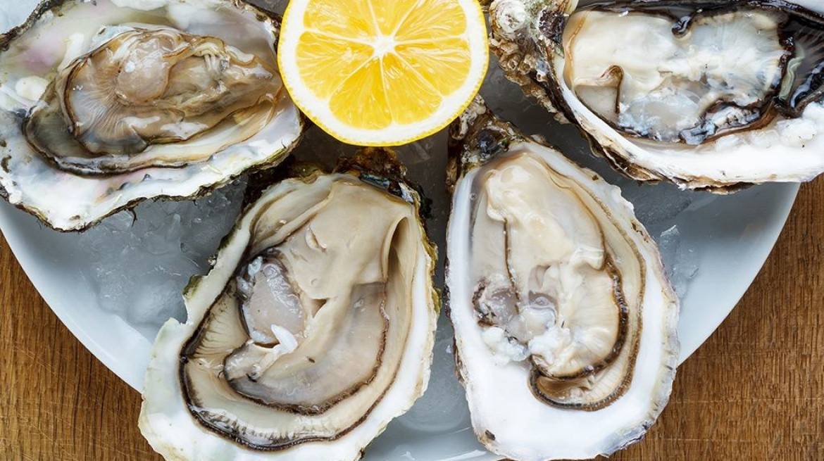 glass goose oysters