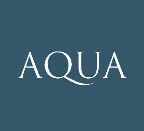 Aqua Welsh Back