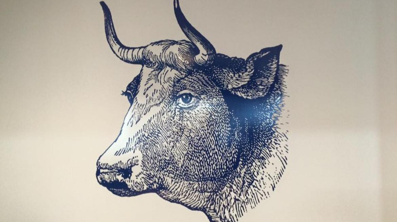 Sabroso Bull