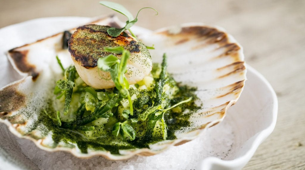 WS Scallop seared green salsa lime wakame dust